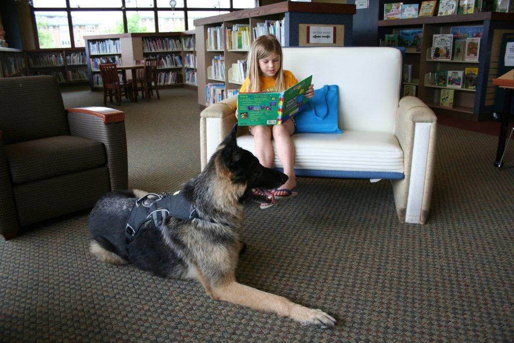 The German Shepherd Dog Club of America (GSDCA) salutes therapy dogs