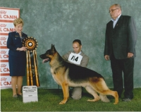Karizma German Shepherds